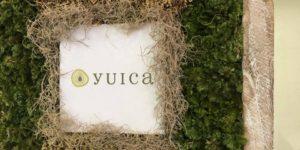 yuica1